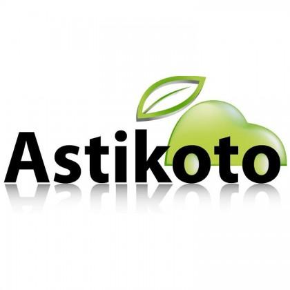 Astikoto – une offre unique sur le marche du lavage automobile
