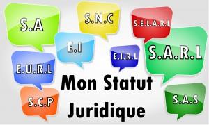 les différents statuts pour le franchisé